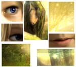 Young Link - Close-ups