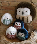 Easter greetings from the owl nest!