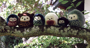 Epic tree trunk - More owls - Sold