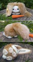 Commission - Sleepy eyed bunny