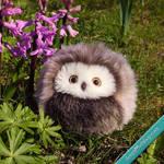 Poe the Petite owl plush - Sold