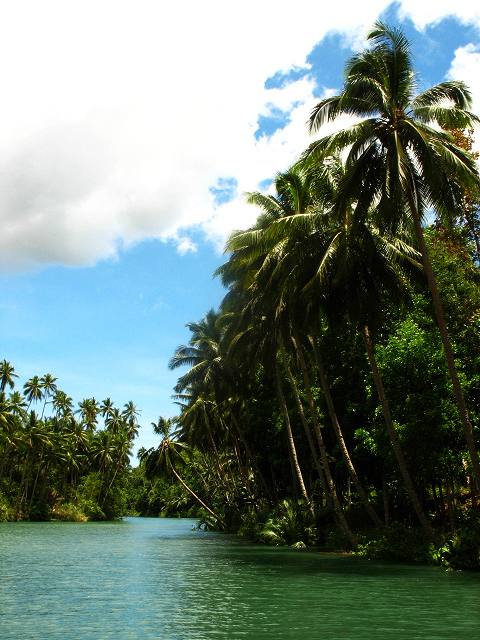 Bohol Day Tour Package From Cebu