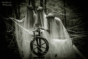 The three Norns