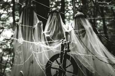 The Norns of fate