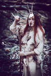 Forest Witch II.