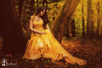 Autumn Fairyland II.