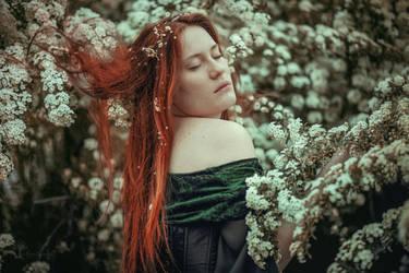 Spring Euphoria by LucreciaMortishia