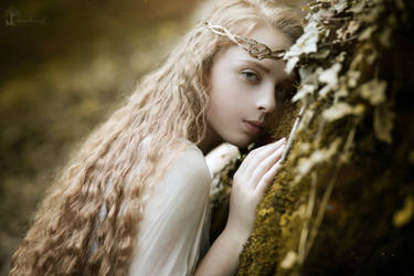 Lady Lohtlorien by LucreciaMortishia