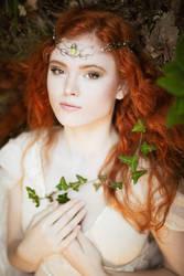 Elven fairy by LucreciaMortishia