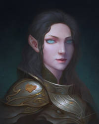 Half-Elf Paladin by YueQing