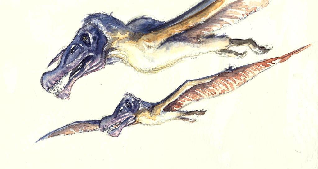 Ornithocheirus by KikaPaz
