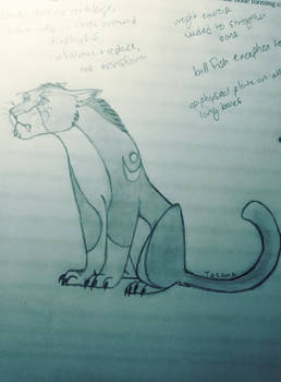 Druid Cat