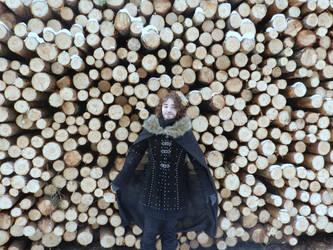 wood by Esmeten