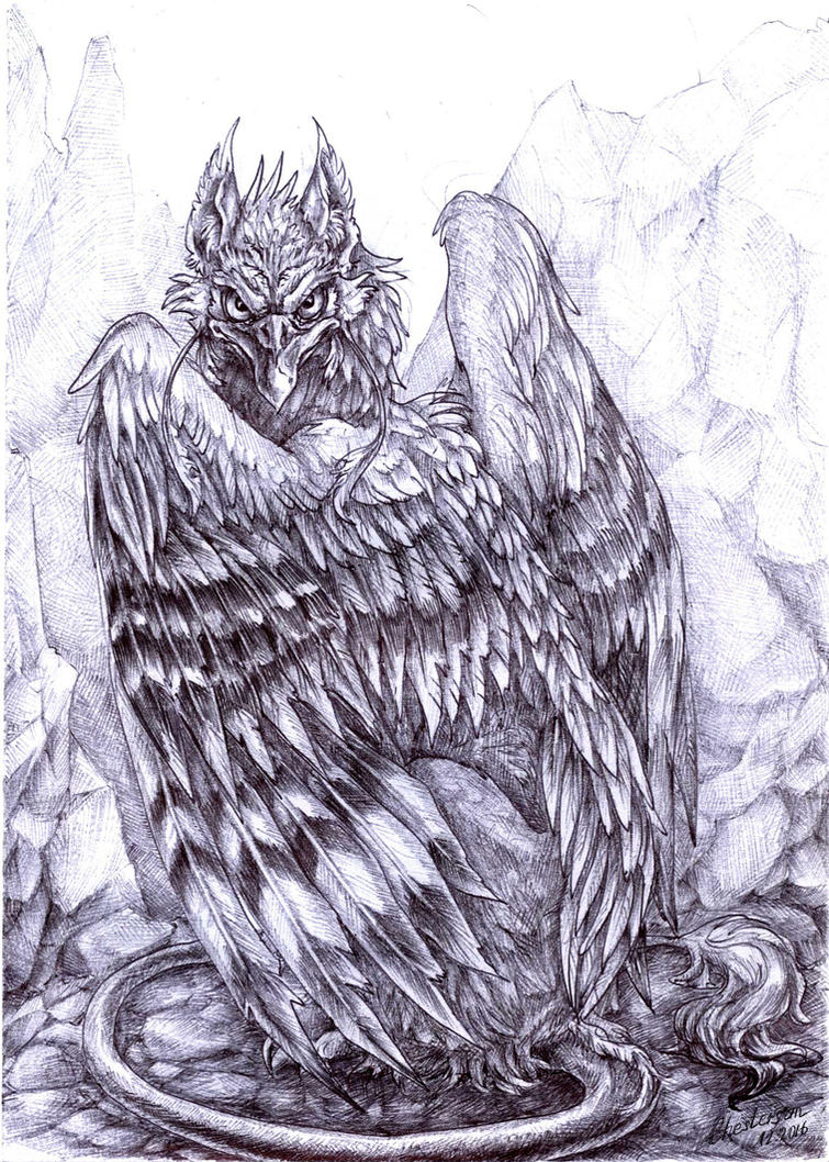 Griffin by Chestersan
