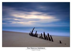 The Trinculo Shipwreck