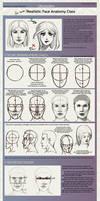 XAI face anatomy class