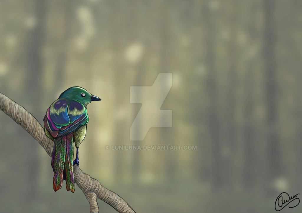 Morningmist Magpie by LuniLuna