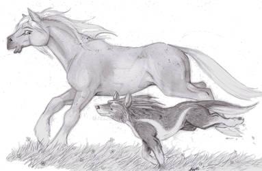 Race across Hyrule by Allaeysis