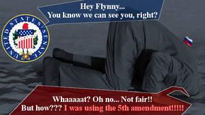 Flynny 5th amendment