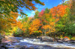 Rapids on the Oxtongue