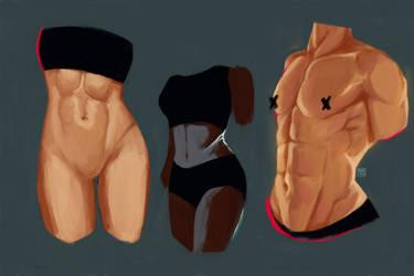 anatomy study: (1) abs