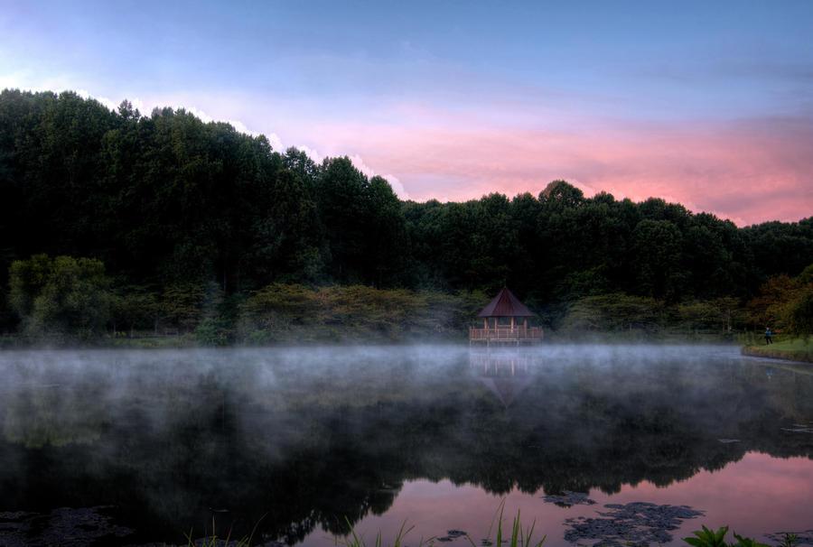 Meadowlark Sunrise 2 by CharlesWb