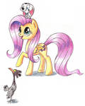 Fluttershy, Cadpig and Spot