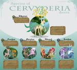 Referense sheet of deer species
