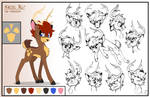 Hazel Nut: Character sheet and sketches
