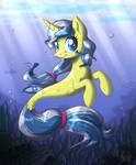 Sea pony (finished)