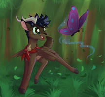 Follow the butterfly by Sirzi