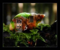 a faerie's abode