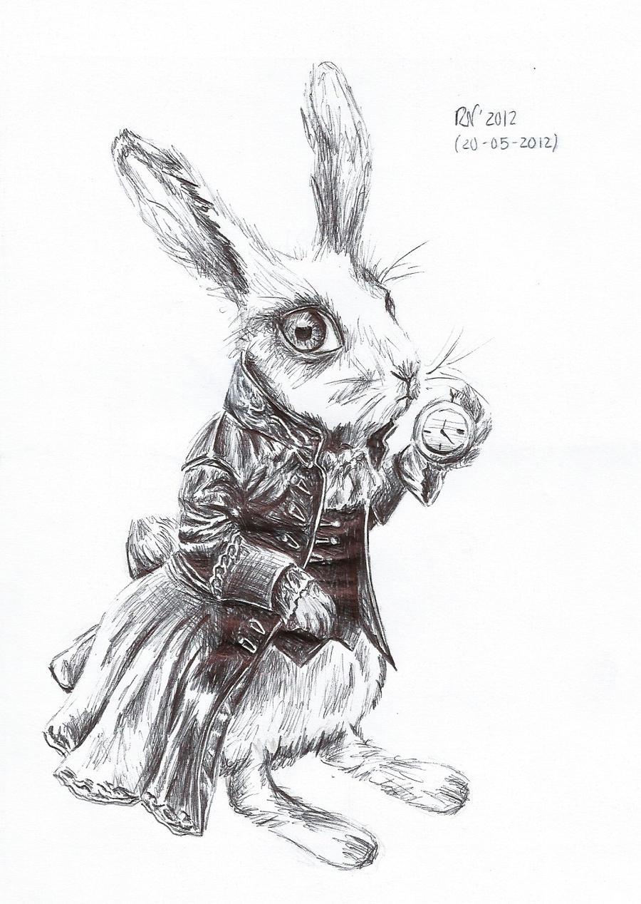 Time Rabbit By Askavin Time Rabbit By Askavin