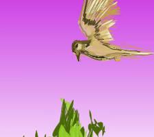 Harrier hawk ex by Yosemite-Stories