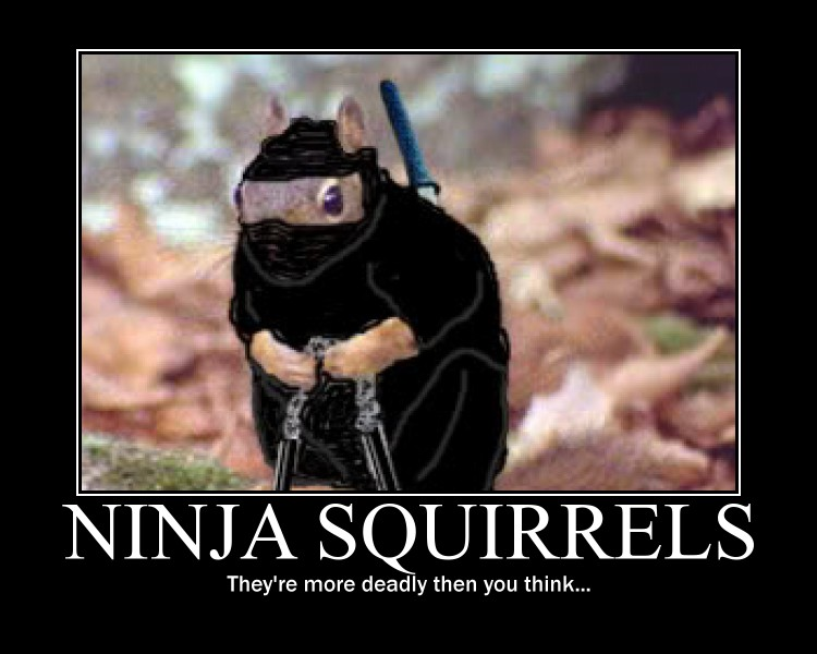 ninja squirrel demotivational by Stickbomber