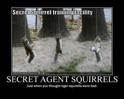 Agent squirrel demotivational by Stickbomber