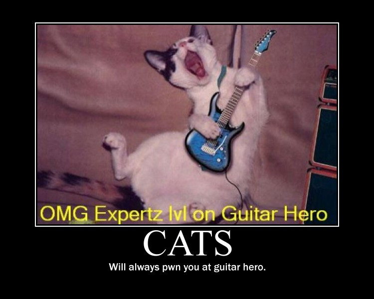 guitar cat demotivational by Stickbomber