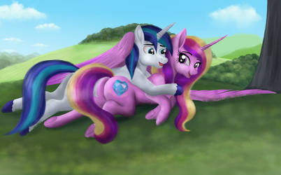 Gotcha! _(Cadence and Shining Armor)