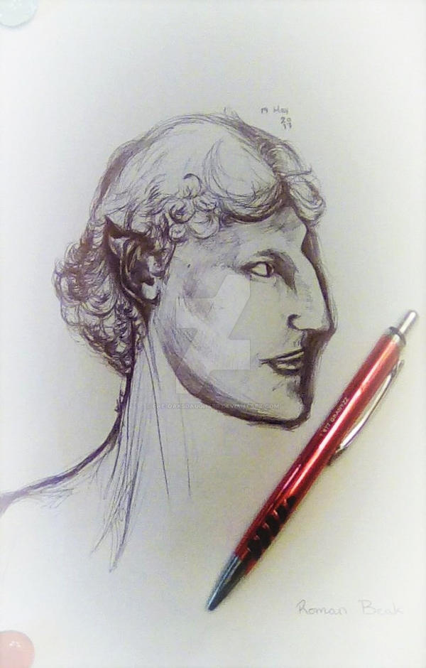 Roman Beak Pen Drawing