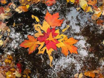 Autumn Float by kaikaku