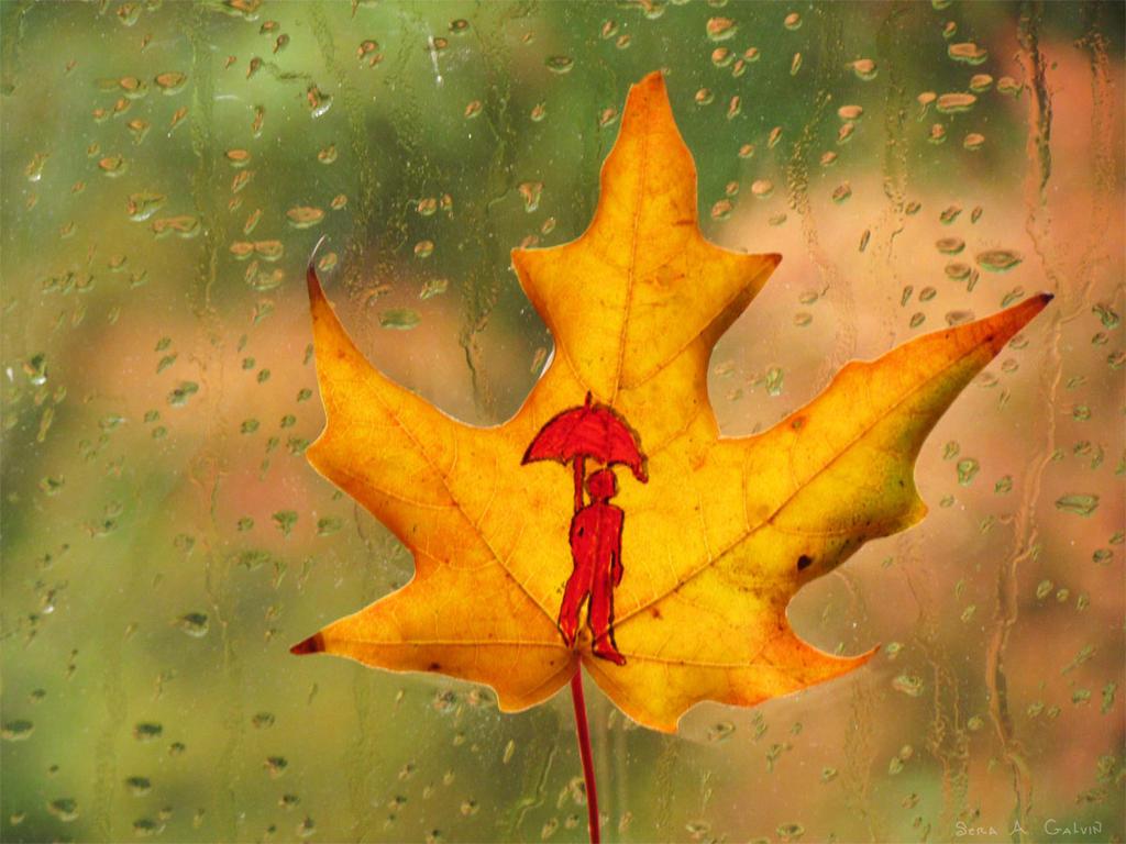 Rainy Rivulets by kaikaku