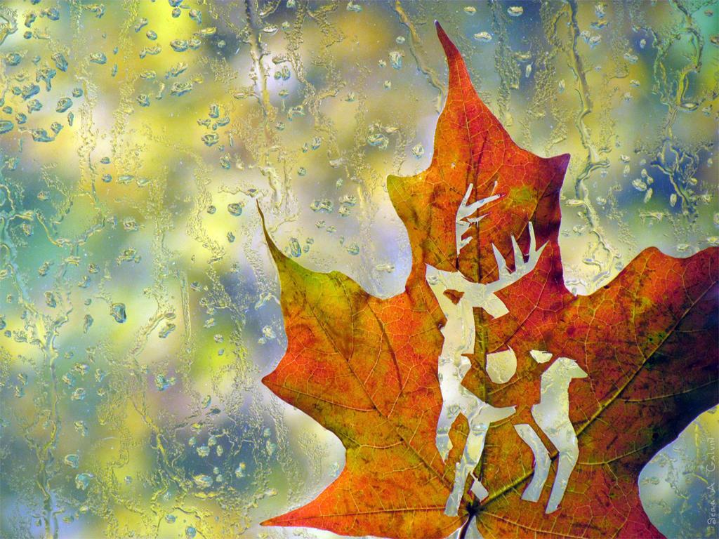 Autumn Stag by kaikaku