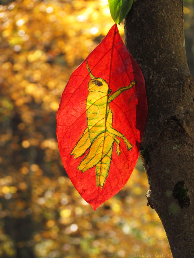 Leaf Locust by kaikaku