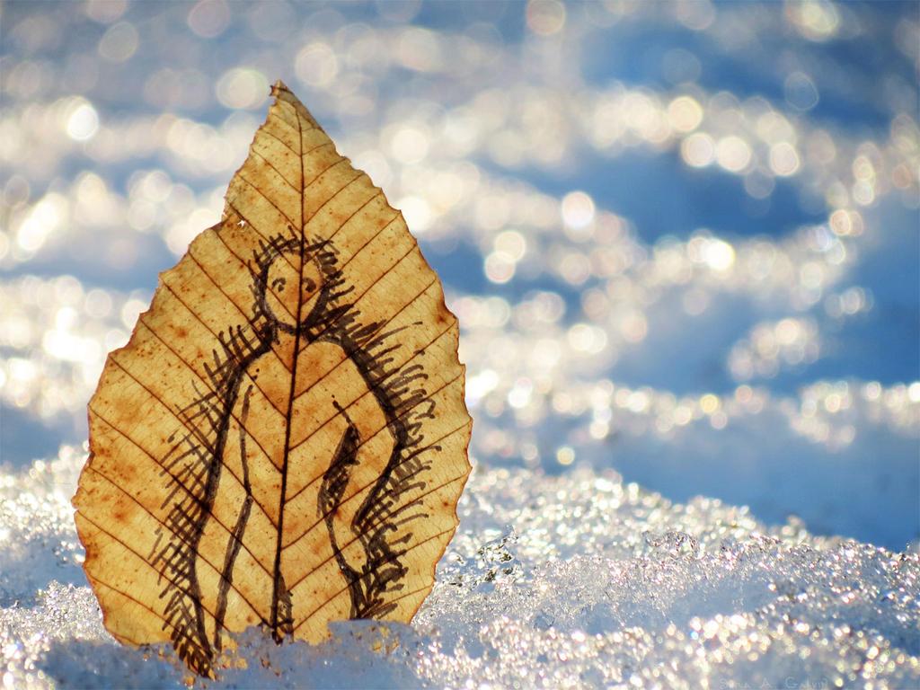 Leaf Sprite in the Deep Snow by kaikaku