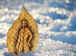 Leaf Sprite in the Deep Snow