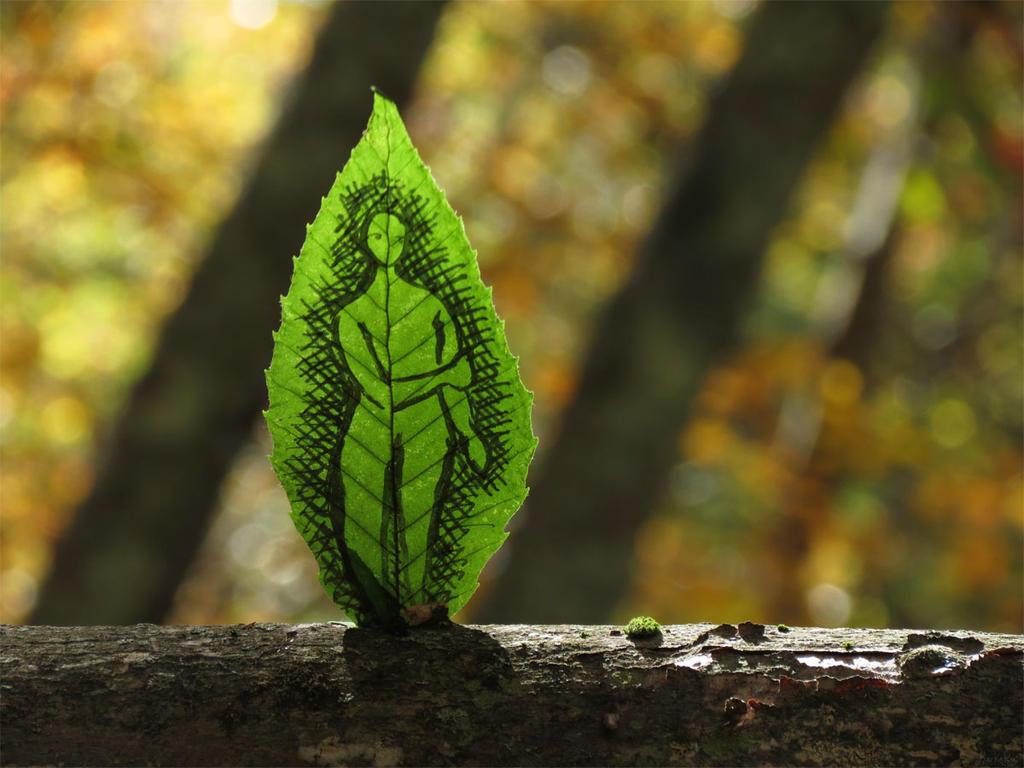 Shy leaf sprite by kaikaku