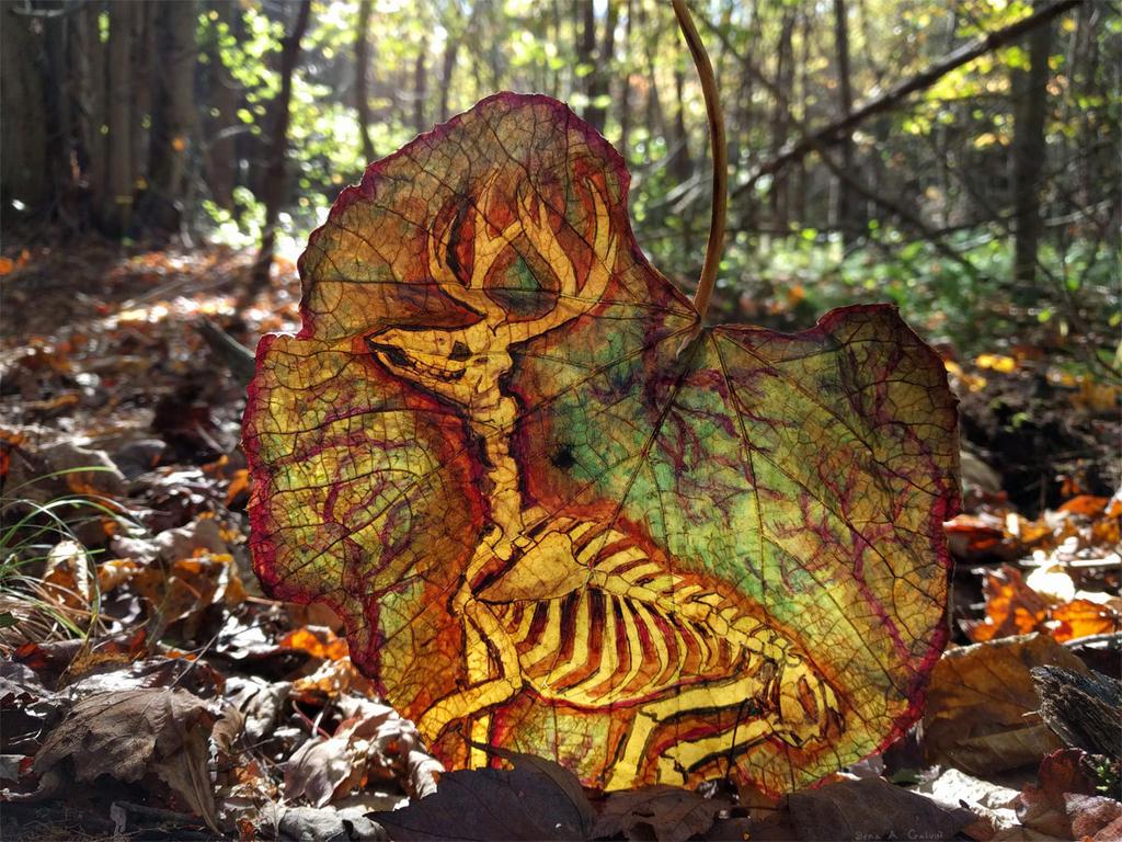 Ghostly Deer Skeleton by kaikaku