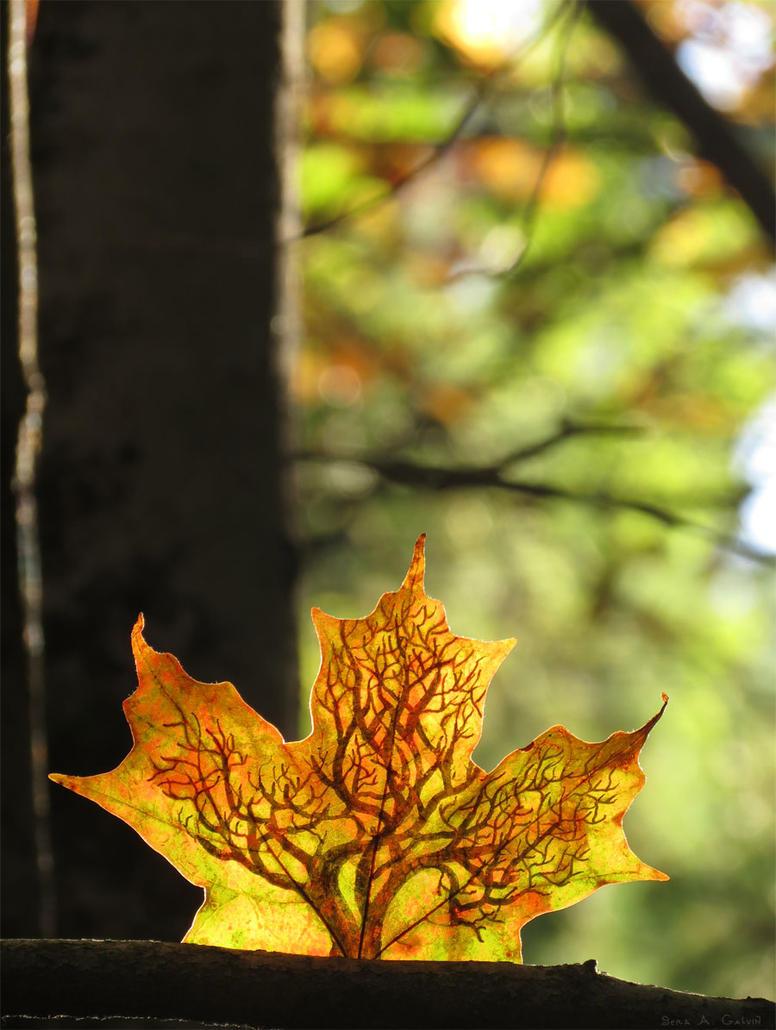 Tree by kaikaku