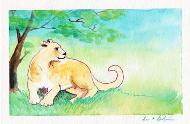Lioness by kaikaku