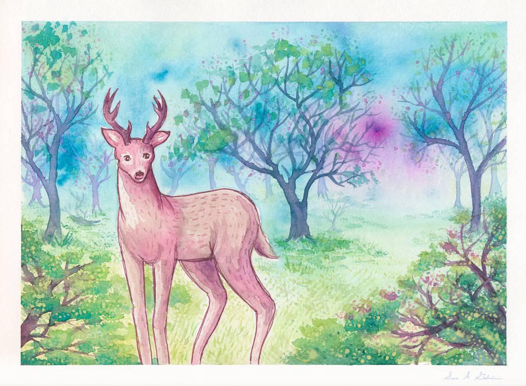 The edge of the woodland by kaikaku